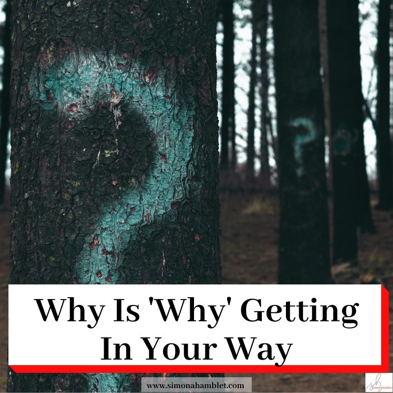 Trees in a wood with question marks on them and the title Why Is Why Getting In Your Way